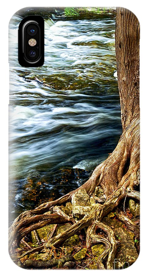 Trunk IPhone X / XS Case featuring the photograph River Through Woods by Elena Elisseeva