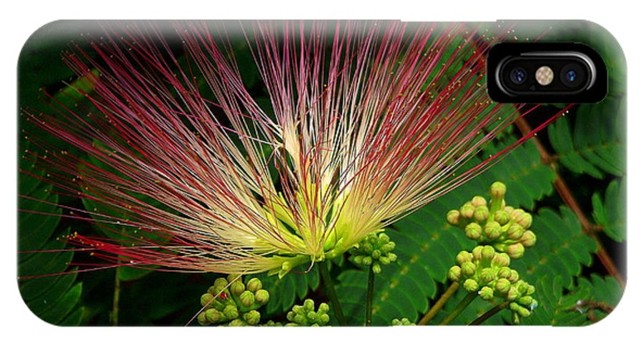 Mimosa IPhone X Case featuring the photograph River Wildflowers by CapeScapes Fine Art Photography