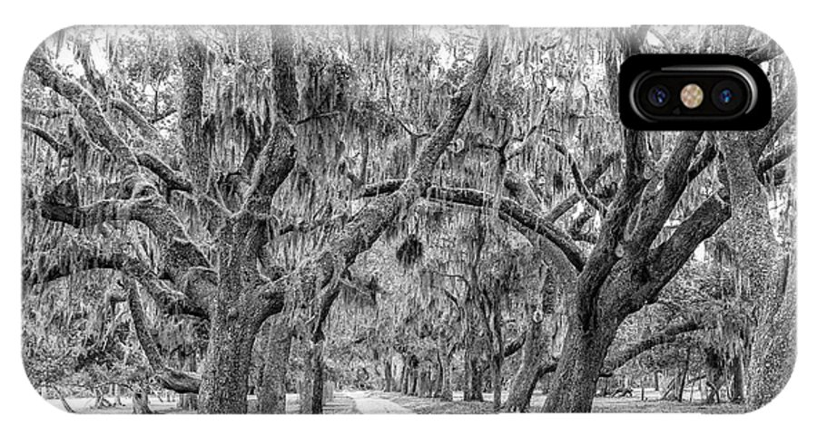 Cumberland Island IPhone X Case featuring the photograph Road To Dungness by Scott Moore