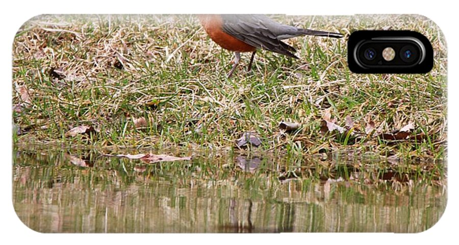Robin Reflection IPhone X Case featuring the photograph Robin Reflection by Dan Sproul