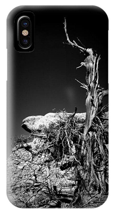 Desert IPhone X Case featuring the photograph Rock And Branch by Holly Storz
