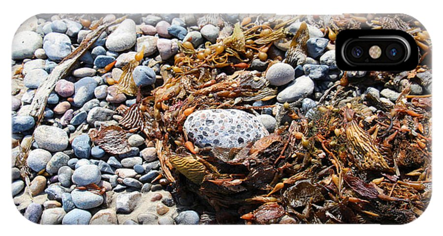 Egg IPhone X Case featuring the photograph Rock Weed by Shawn MacMeekin
