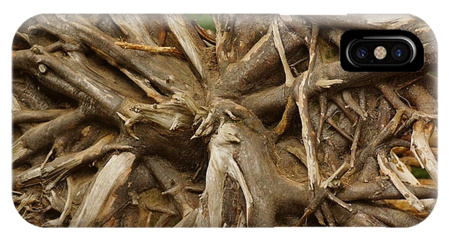 Trees IPhone X Case featuring the photograph Root System by Jeffery L Bowers