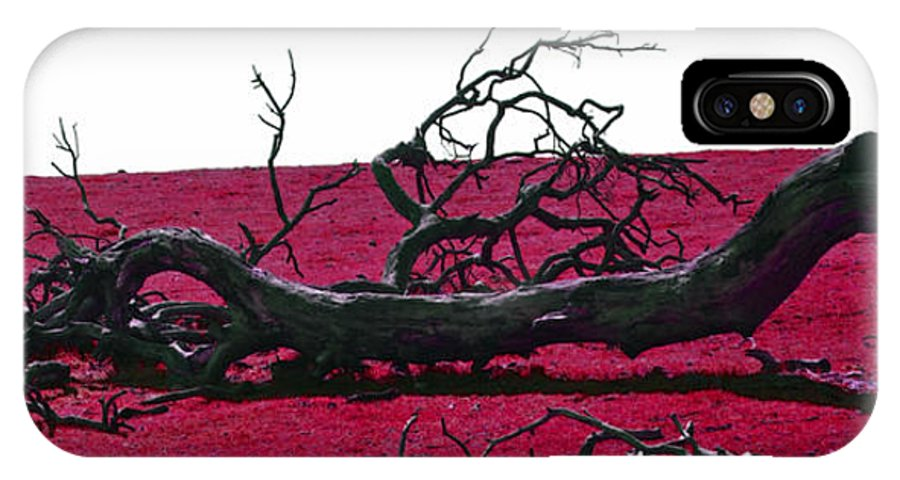Tree IPhone X Case featuring the photograph Rooted In Red by Holly Blunkall