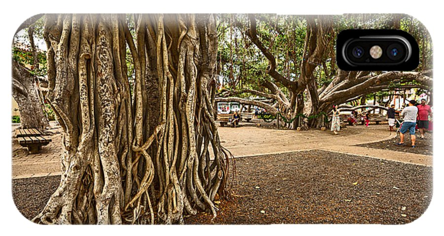 Banyan Tree Park IPhone X Case featuring the photograph Roots - Banyan Tree Park In Maui by Jamie Pham