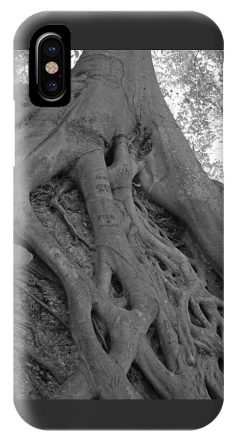 Tree IPhone X Case featuring the photograph Roots II by Suzanne Gaff
