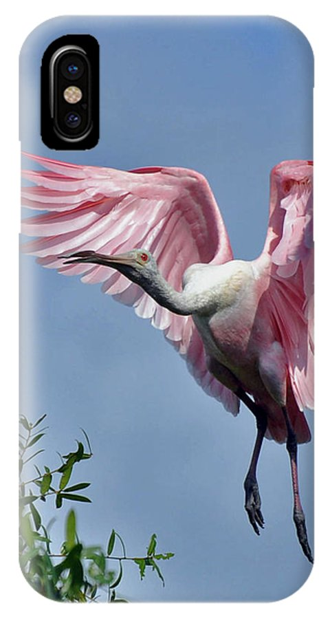 Roseat Spoonbill IPhone X Case featuring the photograph Roseat Spoonbill by Forwen DelaRosa