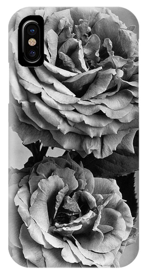 Flowers IPhone X Case featuring the photograph Roses by J. Horace McFarland
