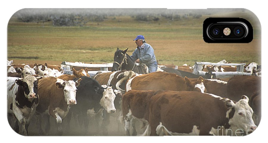Cowboy IPhone X Case featuring the photograph Cattle Round Up Patagonia by James Brunker