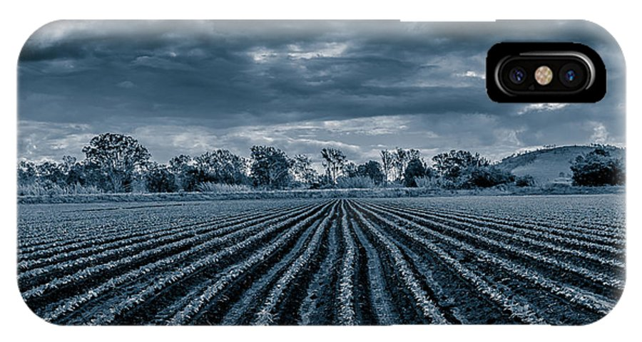 Rows IPhone X Case featuring the photograph Rows N Rows by Keith Hawley
