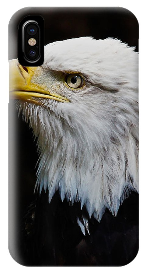 Eagle IPhone X Case featuring the photograph Ruffled Feathers by Athena Mckinzie