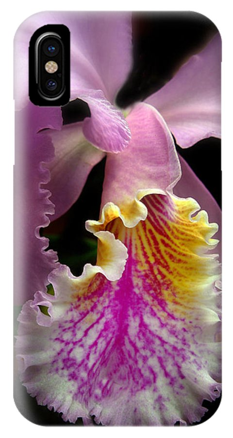 Flowers IPhone X Case featuring the photograph Ruffled by Jessica Jenney