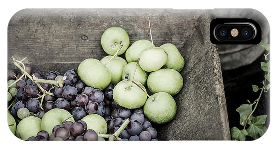 Instagram IPhone X Case featuring the photograph Rustic Fruit by Antony McAulay