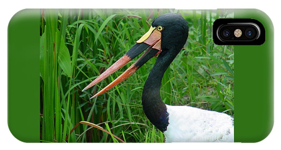 Saddle Billed Stork IPhone X Case featuring the photograph Saddle Billed Stork-00139 by Gary Gingrich Galleries