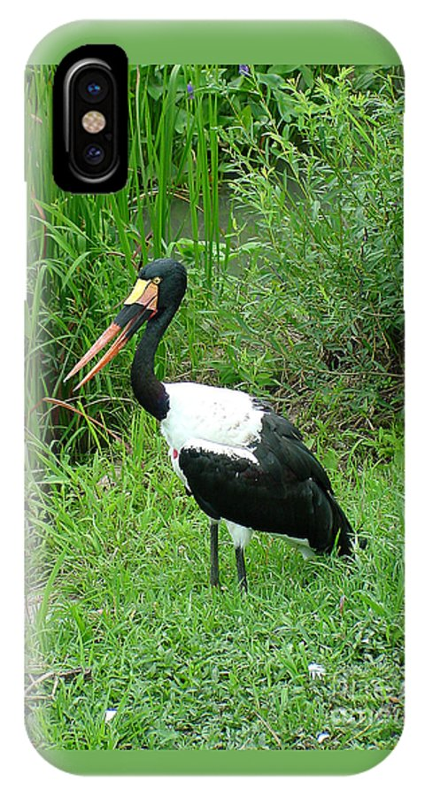 Saddle Billed Stork IPhone X Case featuring the photograph Saddle Billed Stork-136 by Gary Gingrich Galleries