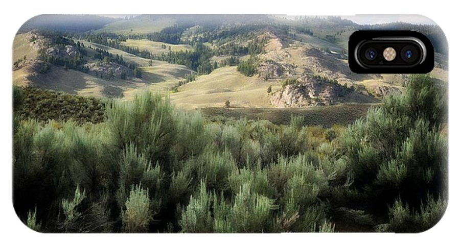 Landscape IPhone X Case featuring the photograph Sagebrush by Marty Koch