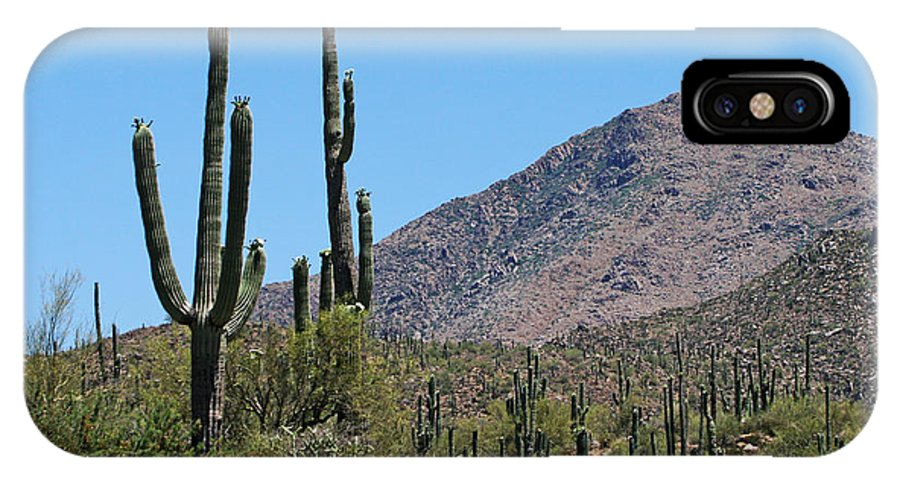 Saguaros And Mountain IPhone X Case featuring the photograph Saguaros And Mountain by Tom Janca