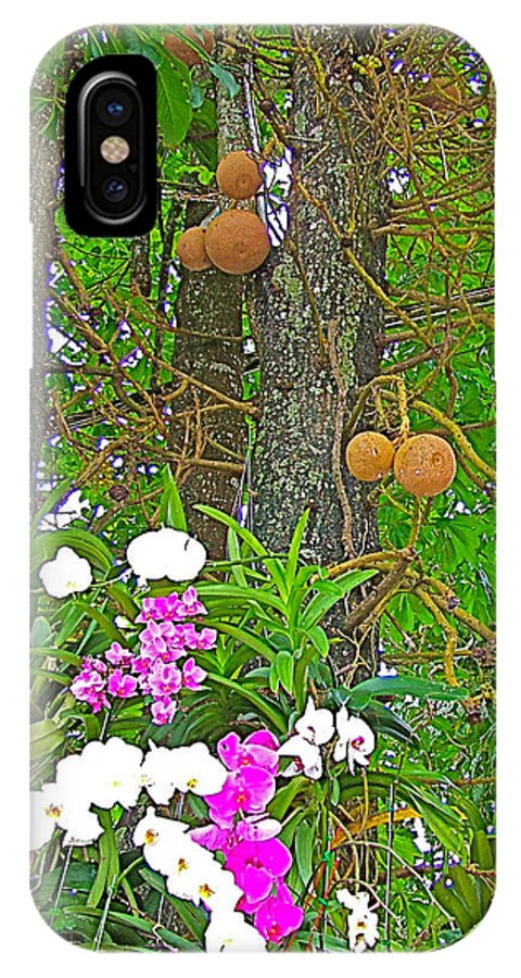 Sala Tree And Orchids At Buddhist University In Chiang Mai IPhone X Case featuring the photograph Sala Tree And Orchids At Buddhist University In Chiang Mai-thail by Ruth Hager