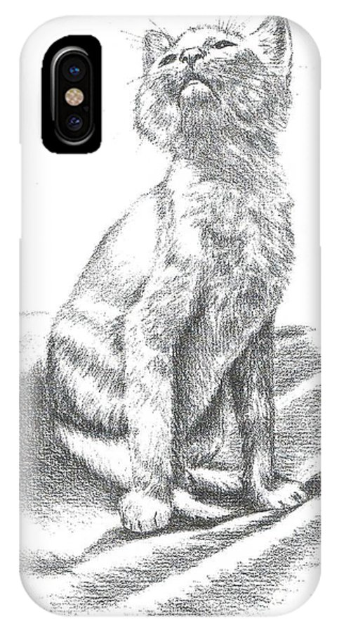 Cat IPhone X Case featuring the drawing Sam by Joann Renner