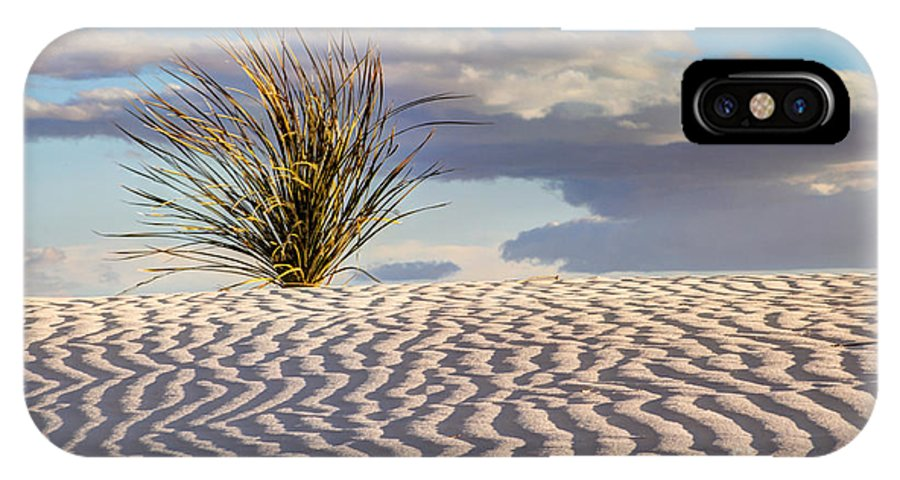 Yucca IPhone X Case featuring the photograph Sand Patterns And The Yucca by Vivian Christopher