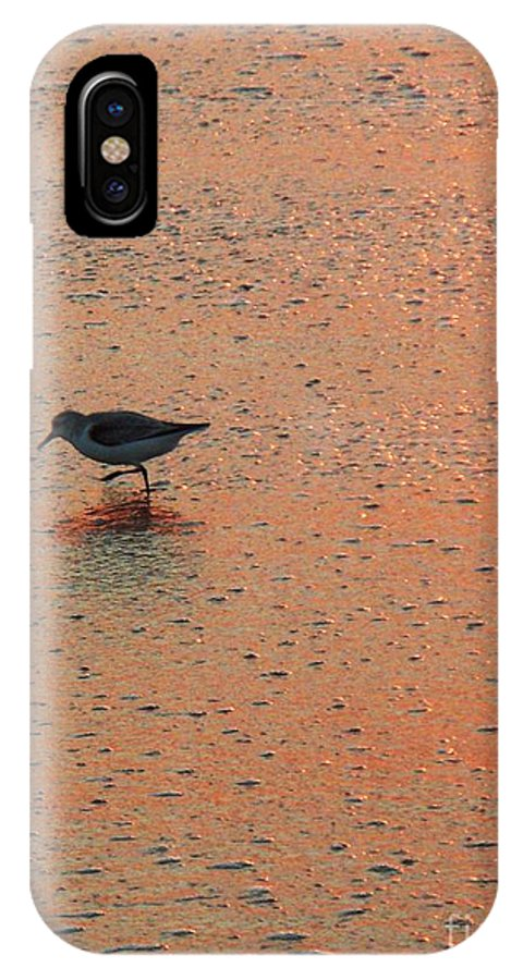 Beach IPhone X Case featuring the photograph Sandpiper On Shoreline by Eric Schiabor