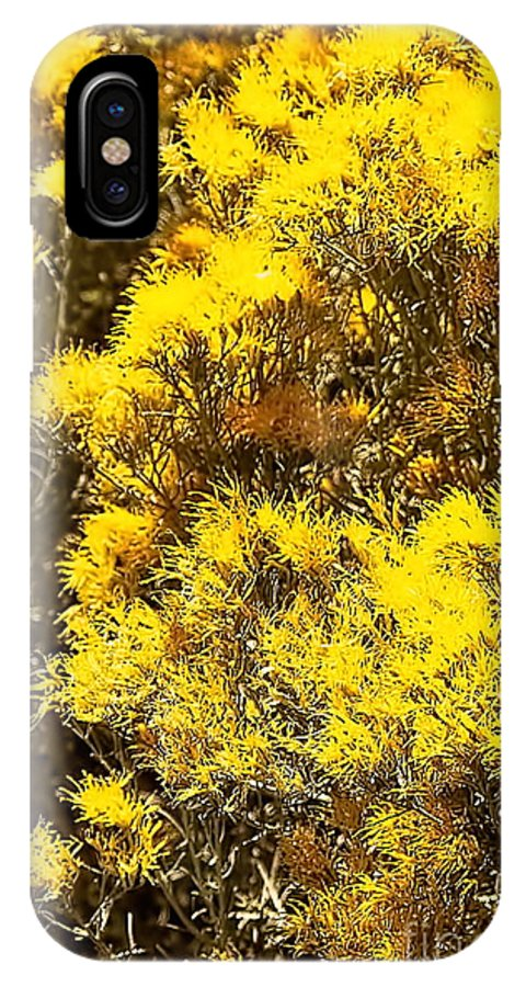 Color Photo IPhone X / XS Case featuring the digital art Santa Fe Yellow by Tim Richards