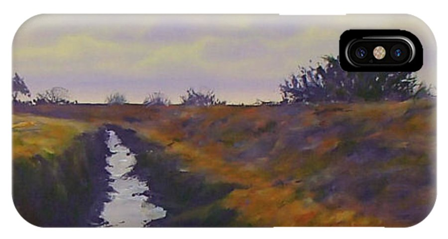 Landscape IPhone X Case featuring the painting Santa Maria Twilight by Philip Fleischer
