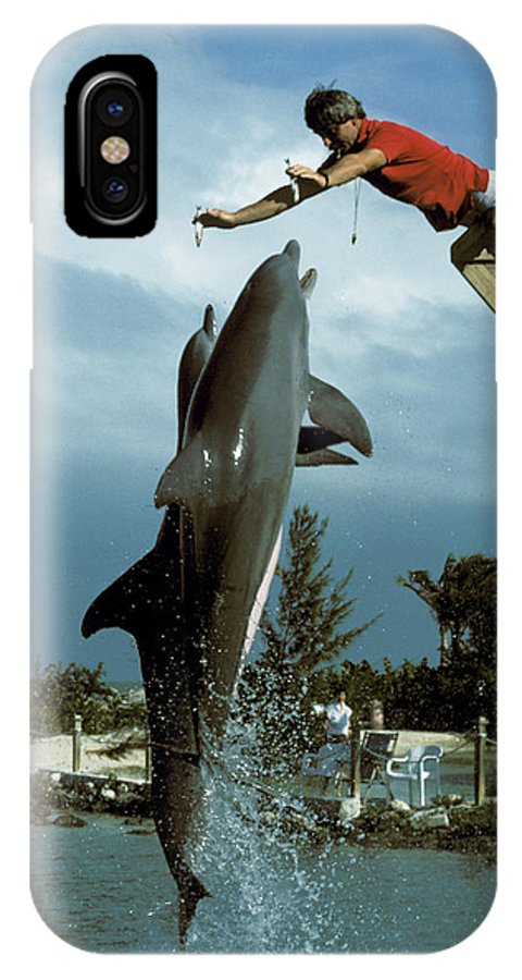 Jumping IPhone X Case featuring the photograph Sardine Snacks For Leaping Dolphins by Carl Purcell