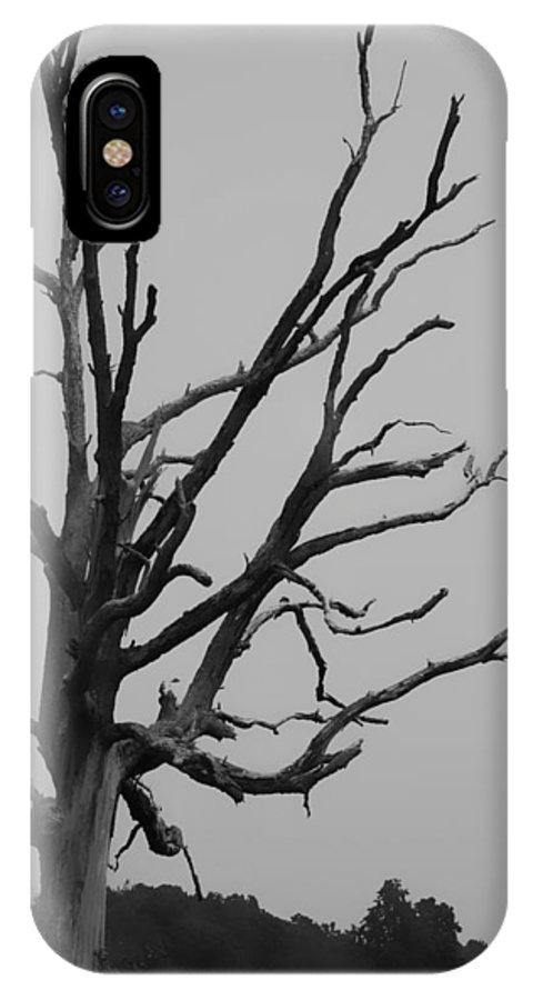 Kelly Hazel IPhone X Case featuring the photograph Scary Tree IIi by Kelly Hazel