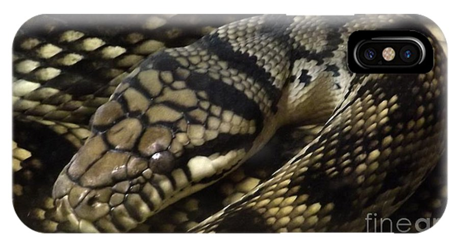 Snakes IPhone X Case featuring the photograph Scrub Python Abstraction by Sara Raber