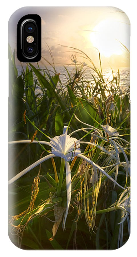 Clouds IPhone X Case featuring the photograph Sea Lily by Debra and Dave Vanderlaan