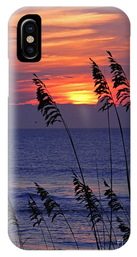 Landscape IPhone X / XS Case featuring the photograph Sea Oats By The Sea by Amber Ruth