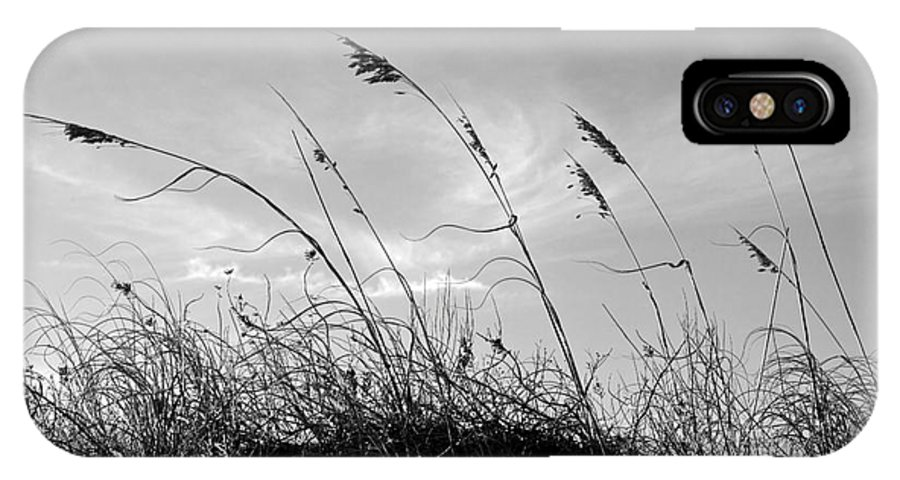 Sea Oats Silhouette IPhone X Case featuring the photograph Sea Oats Silhouette by Michelle Constantine
