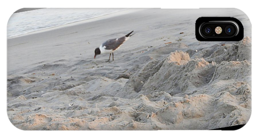 Beach IPhone X Case featuring the photograph Seagull by April Lerro