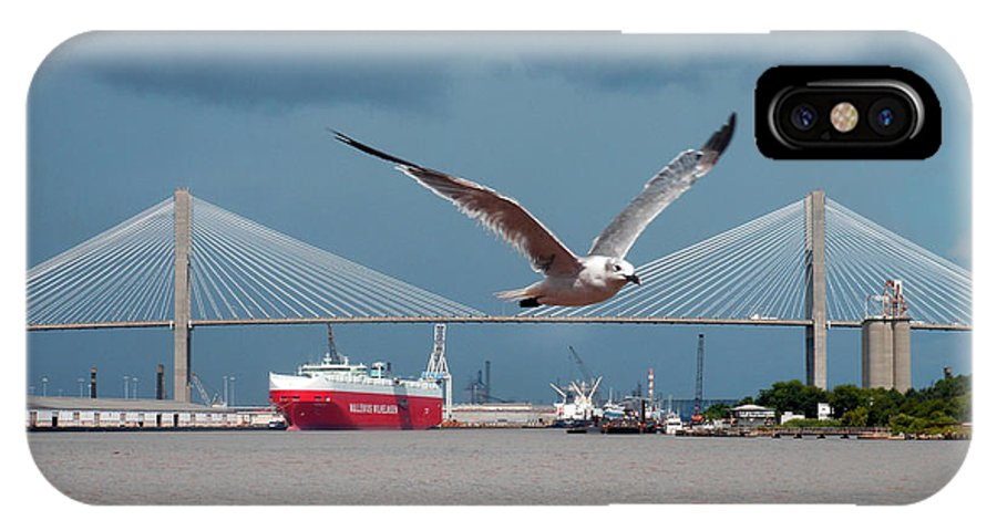 Seagull IPhone X Case featuring the photograph Seagull Foto Bombs Image by Sherry Dooley