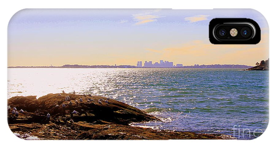 Nahant IPhone X Case featuring the photograph Seagull Rock by Lennie Malvone