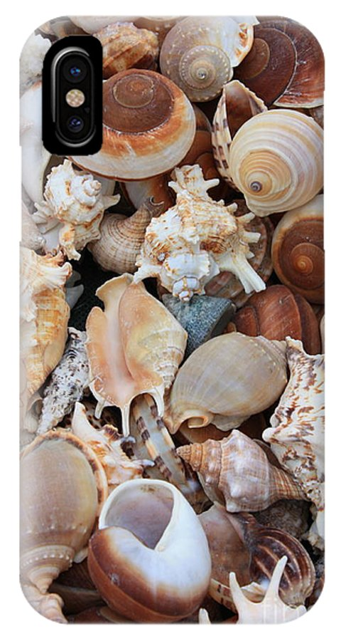 Shell IPhone X Case featuring the photograph Seashells - Vertical by Carol Groenen