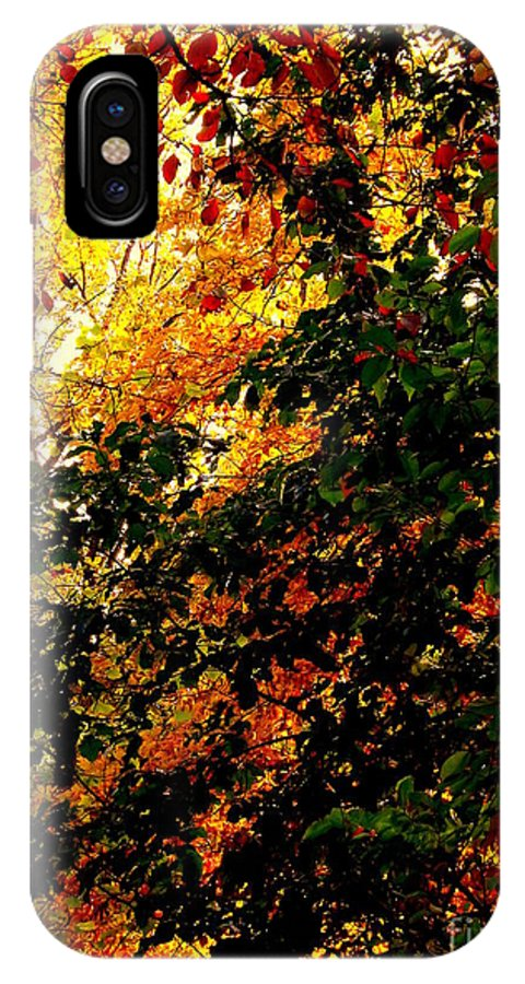 Fall IPhone X Case featuring the photograph Season Of Color by John Potts