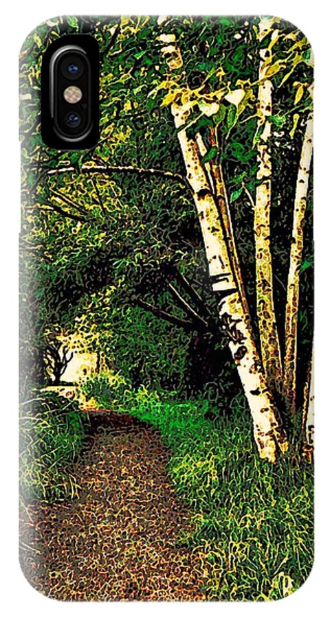Marsh IPhone X Case featuring the photograph Sechelt Marsh Path by Stanley Funk