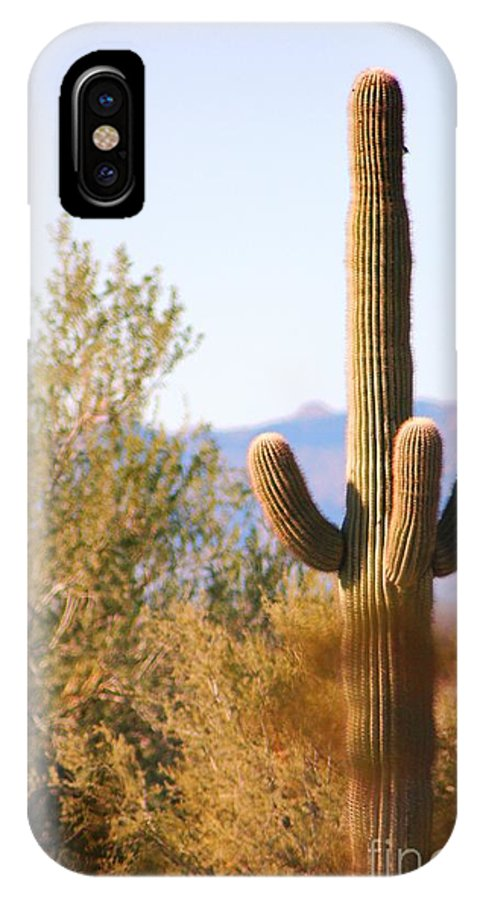 Seguro Cactus IPhone X Case featuring the photograph Seguro Cactus by Teresa French