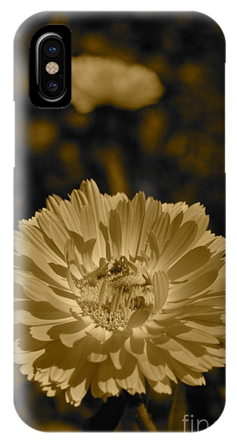 Photography By Tiwago IPhone X Case featuring the photograph Sepia Flowers by Photography by Tiwago