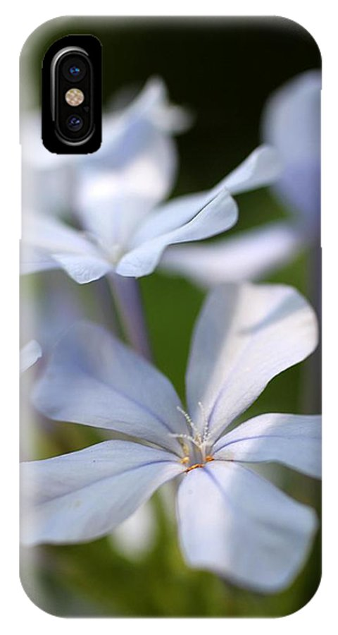 Light Purple Flower Close Up Macro Nature Green Park Botanical Garden Exotic Flower IPhone X / XS Case featuring the photograph Shade by AR Annahita