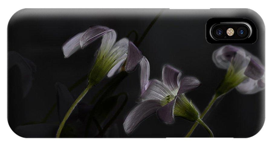 Shamrock.shamrocks IPhone X Case featuring the photograph Shamrock Trinity by Susan Capuano