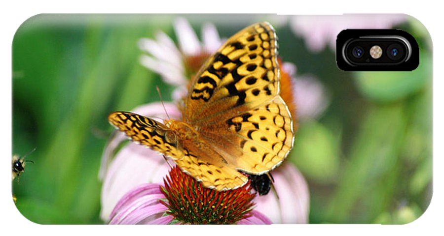 Butterfly IPhone X Case featuring the photograph Sharing by Living Color Photography Lorraine Lynch