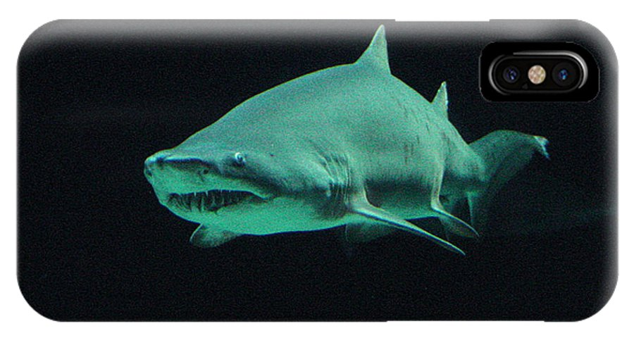 Shark IPhone X Case featuring the photograph Shark-09441 by Gary Gingrich Galleries