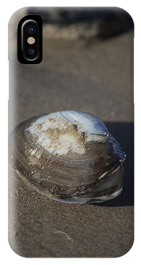 Sea Shell IPhone X Case featuring the photograph Shell Or Someone's Dinner by Spikey Mouse Photography