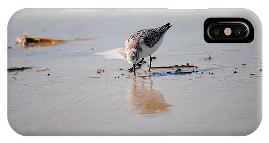 Shore Bird IPhone X Case featuring the photograph Shore Bird by Carol Brunner