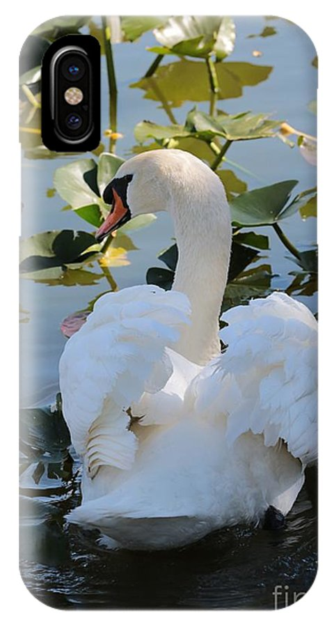 Swan IPhone X Case featuring the photograph Shy Swan by Carol Groenen