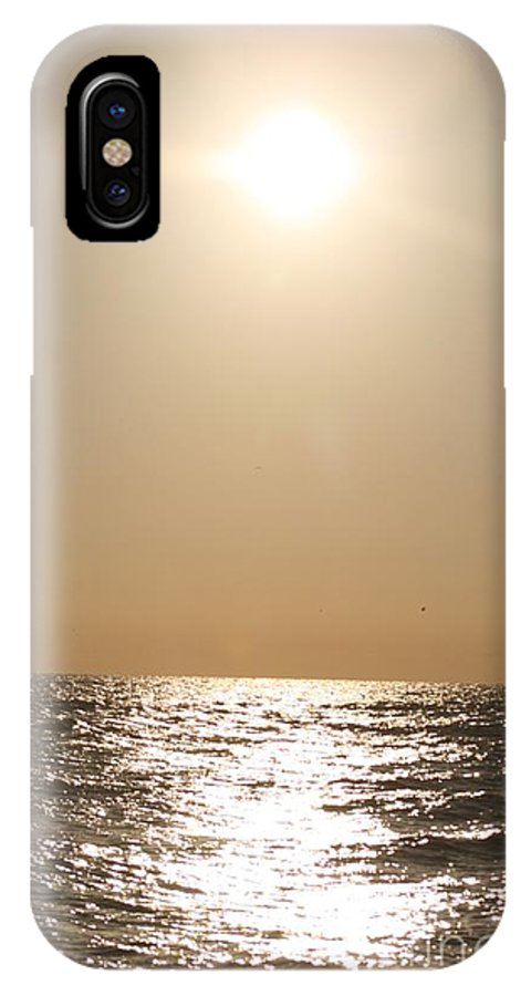 Silver IPhone Case featuring the photograph Silver And Gold by Nadine Rippelmeyer