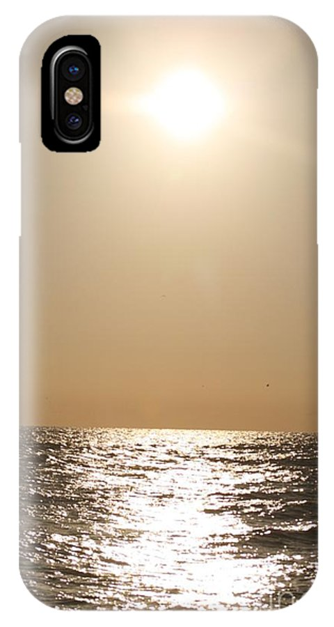 Silver IPhone X Case featuring the photograph Silver And Gold by Nadine Rippelmeyer